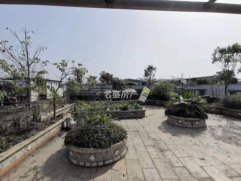 徐家扁学校附近 带100平 平台花园 建华苑大两室 拎包可住